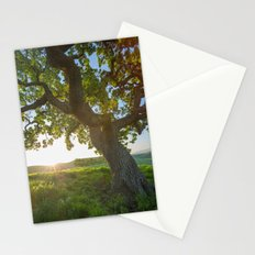 Morning In Danville Stationery Cards