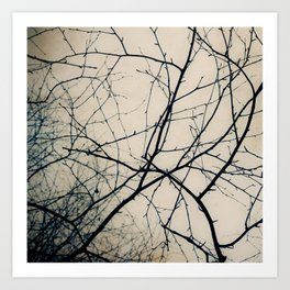 Beneath Bare Branches Art Print