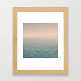 Fly by night Framed Art Print