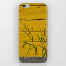 Green grass iPhone Skin