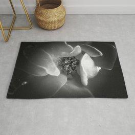 blooming rose with pollen in black and white Rug