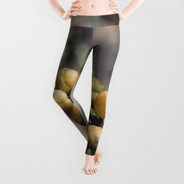 Illustration Coffee Beans Leggings