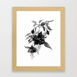 Briar, black and white Framed Art Print