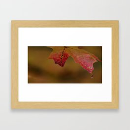 Forever Fall Framed Art Print