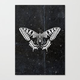 Butterfly in the stars Canvas Print