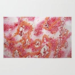 Pink Land Rug