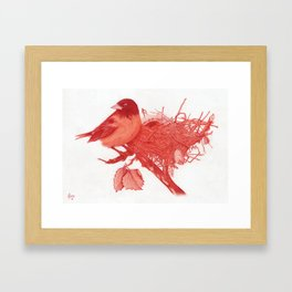 Nested Oriole Framed Art Print