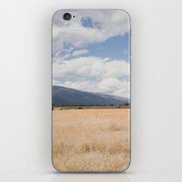 Montana Gold III iPhone Skin