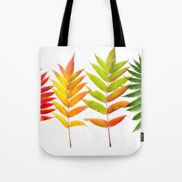 Rainbow Sumac for Autumn in Canada Tote Bag