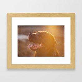 sunbath Framed Art Print