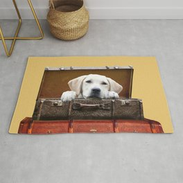 Golden Retriever in old suitcase looking Rug