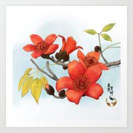 Tree Cotton Flower (Common Bombax) Art Print