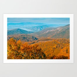 Autumn or fall forest view in the mountains, deciduous forest landscape Art Print