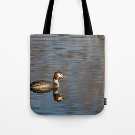 Great crested grebe swims in the calm waters Tote Bag