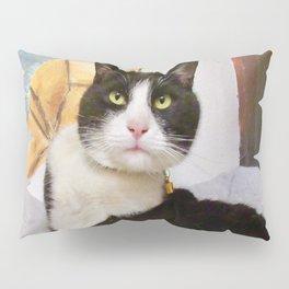 Orazio latin lover cat Pillow Sham