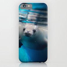 SEA LION iPhone 6s Slim Case