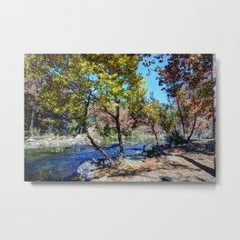 The Hill Country Metal Print