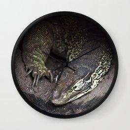 Sleeping lace monitor Wall Clock