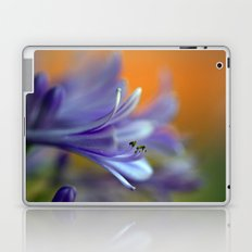 Blue Agapanthus 2786 Laptop & iPad Skin