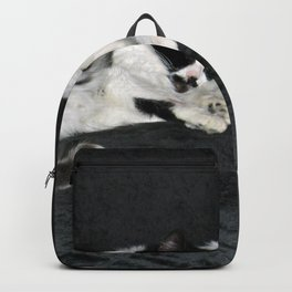 3 cats lounging Backpack