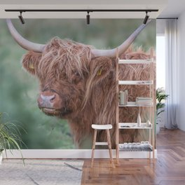 Scottish cow close up Wall Mural