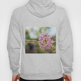 Pink Orchids Hoody