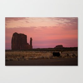 Monmooment Valley Canvas Print
