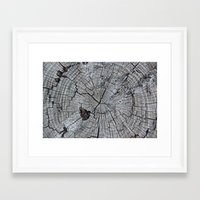 tree rings Framed Art Prints featuring Rings by Elizabeth Velasquez