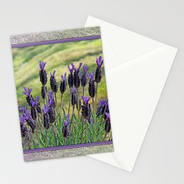 SPANISH LAVENDER AND MOWED SHADOWS Stationery Cards