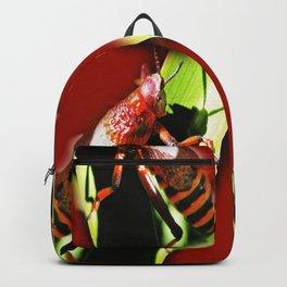 Red Hopper Backpack