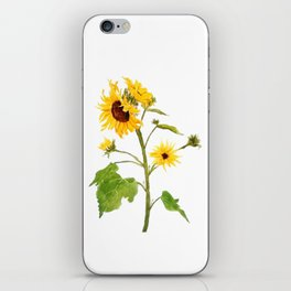 One sunflower watercolor arts iPhone Skin