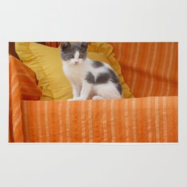 Cute Kitty Rug