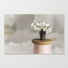 White Violets in a Thimble Canvas Print