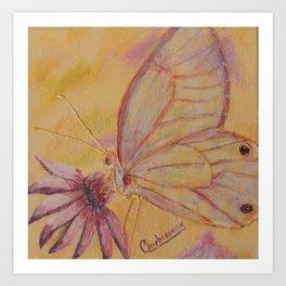 Little mirror butterfly   Petit Miroir papillon Art Print