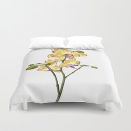 Yellow Phalaenopsis Orchid Traditional Artwork Duvet Cover