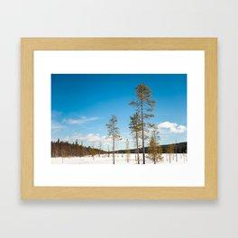 Kesänkijärvi, Lapland Framed Art Print