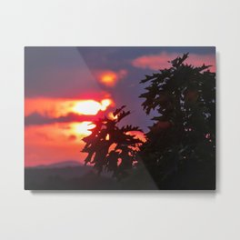 Leafy July Sunset Metal Print