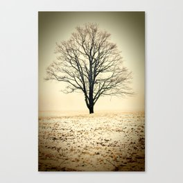 Standing In The Cold Canvas Print