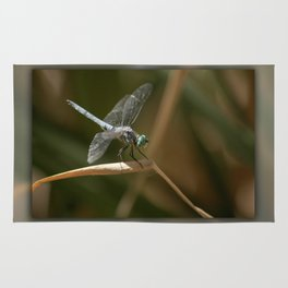 Dragonfly Macro Rug