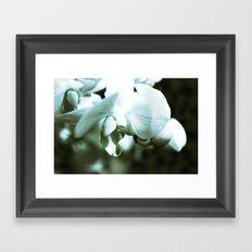 mossy orchid Framed Art Print