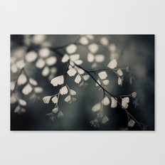 Delicate Leaves Canvas Print