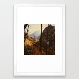 Burning Brush Framed Art Print