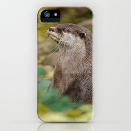 Otter Amongst Autumn Leaves iPhone Case