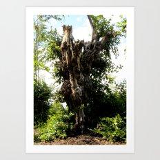 The Ghost Tree Art Print