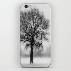 Walking in a winter wonderland iPhone Skin