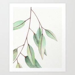 Eucalyptus Leaves One Art Print
