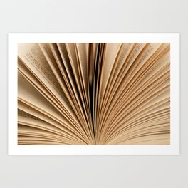 Book Fan Art Print