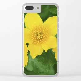 Marsh Marigold Caltha Palustris Clear iPhone Case