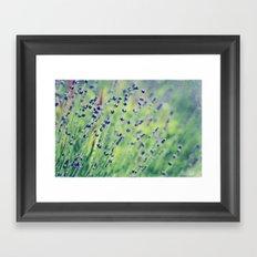 lavender dreams Framed Art Print