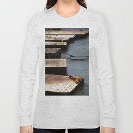 Sunbathing Seals Long Sleeve T-shirt
